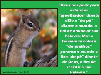 2015 0406 deus nos pede para estarmos ajoelhados portugues