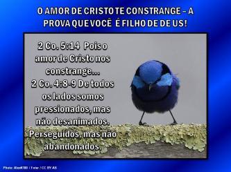 2015 0413 o amor de cristo te constrange portugues