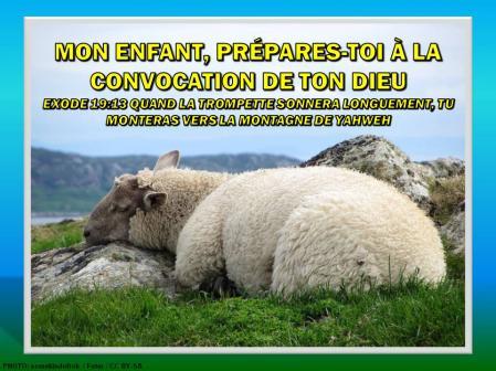 2015 0418 enfant prepares toi convocation francais