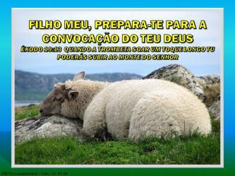 2015 0418 filho meu prepara te para a convocacao portugues