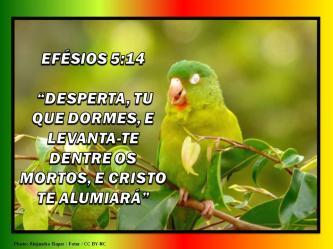 2015 0430 desperta tu que dormes efesios 5 14 portugues