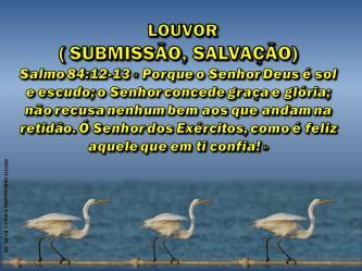 2015 0512 salmo 84 12 deus e sol e escudo portugues