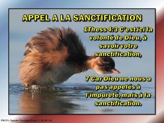 2015 0524 appel a la santification