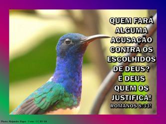 2015 0929 romanos 8 33 quem fara acusacao portugues