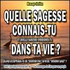 2015 1012 quelle sagesse connais tu minia1 copie carree