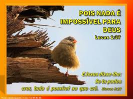 2016 0714 pois nada e impossivel para deus lucas 1 37 portugues