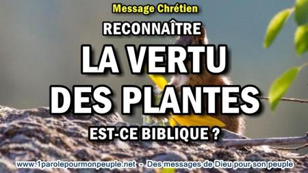 2017 0403 reconnaitre la vertu des feuilles de plantes est ce biblique