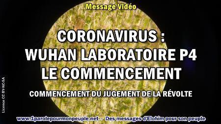 2020 0418 coronavirus wuhan laboratoire p4 le commencement minia1 450