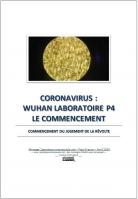 2020 0418 coronavirus wuhan laboratoire p4 le commencement miniacouv1
