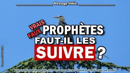 2020 0514 vrais prophetes faux prophetes minia2 450