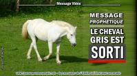 2021 0414 le cheval gris est sorti minia1 450