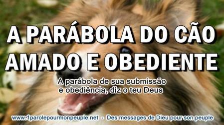 A parabola do cao amado e obediente miniature3