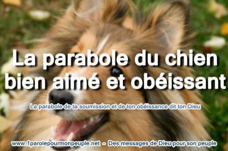 Parabole du chien bien aime miniature2